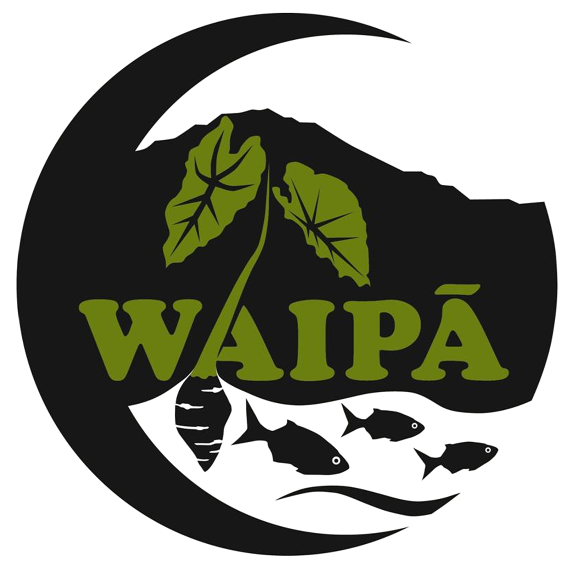 Waipā Foundation